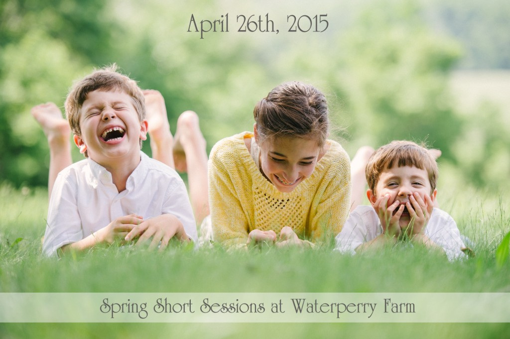 Spring short sessions